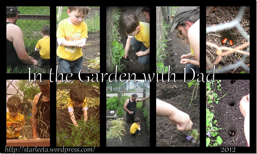 garden and cat1