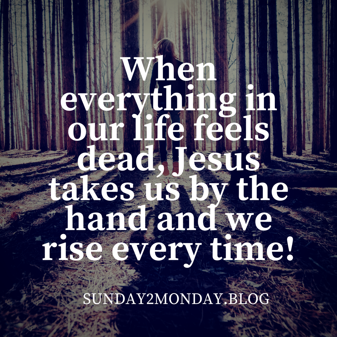 When everything in our life feels dead, Jesus takes us by the hand and we rise every time!