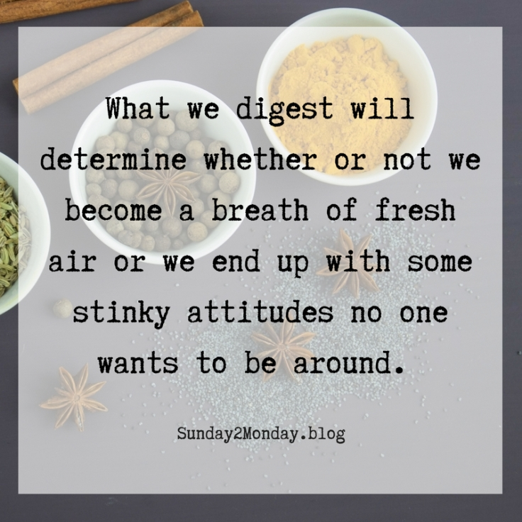 what we digest will determine whether or not we become a breath of fresh air or we have stinky attitudes and actions that no one wants to be around. Add subheading